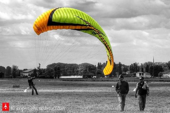 Yellow wing